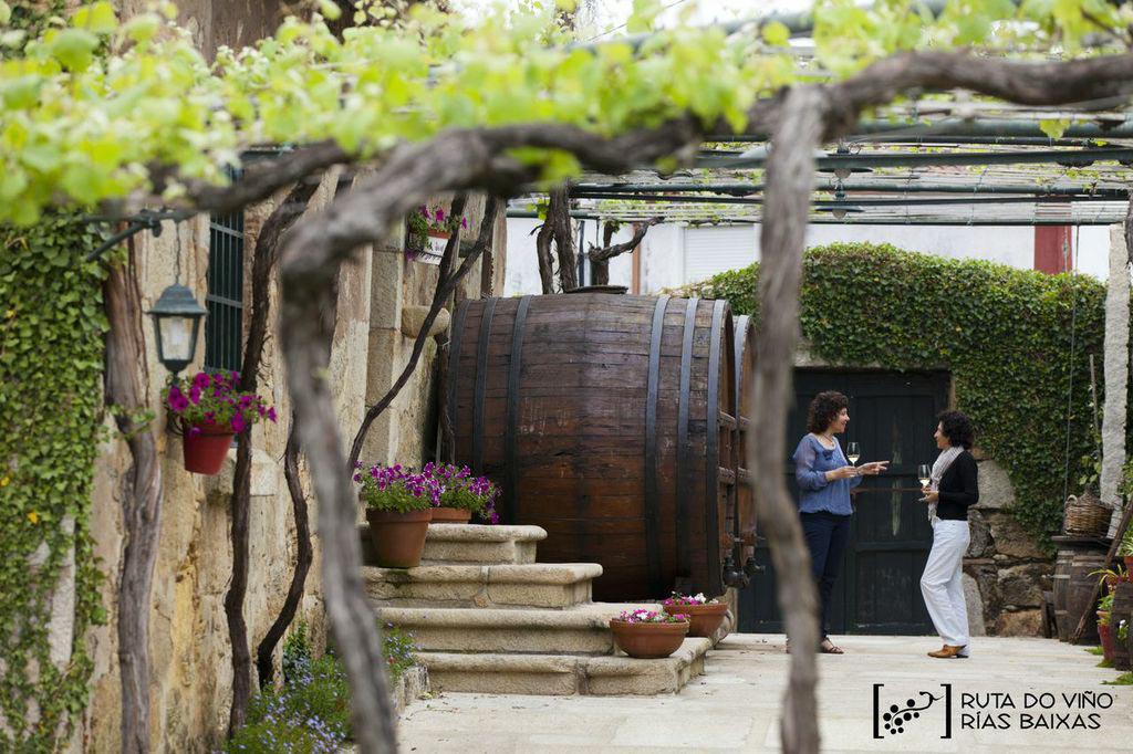 La Ruta do Viño Rías Baixas incrementa un 16% el número de sus visitantes hasta superar los 77.600