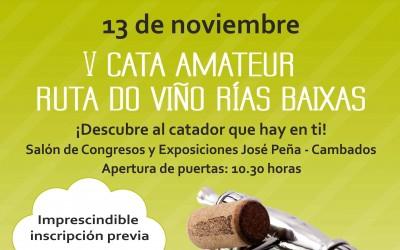 CartelCataAmateurRutaVinoRiasBaixasWeb-1-400x250
