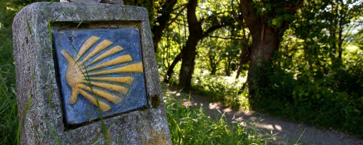 camino de santiago español