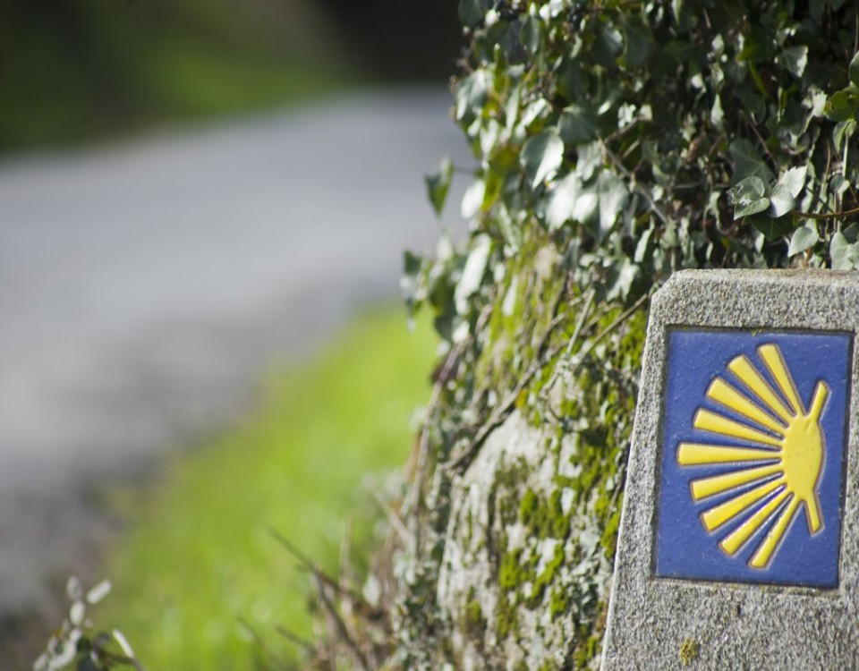 "Symbol of the ""camino de Santiago"", way of St James, which belongs to the UNESCO world heritage. The shell indicates the direction to Santiago de Compostela."